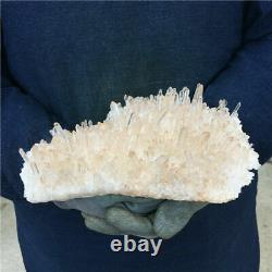 1,483g Natural Clear Nice White Quartz Crystal Cluster Mineral Healing Specimen
