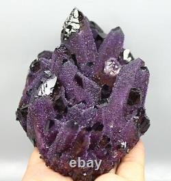 1.76lb RARE! New Find Natural Beatiful Amethyst Quartz Crystal Cluster Specimen