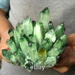 1.9lb Sparkling Green Quartz Crystal Cluster Rough Mineral Healing Specimen