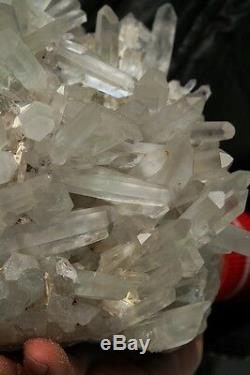 10.45lb AAA+++ Clear Natural Green Ghost Phantom QUARTZ Crystal Cluster Specimen