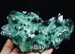 1038g New Find Beatiful Green Tibetan Phantom Quartz Crystal Cluster Specimen