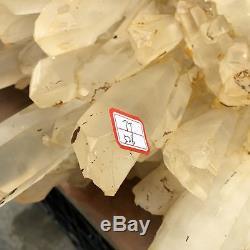 107.8LB Natural clear Quartz Cluster Mineral vug Crystal point Healing 25 TT526