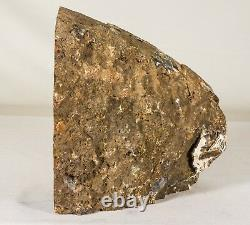 10Lbs Agate Geode Crystal Quartz Polished Specimen Brazil