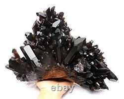 11.75lb Rare Natural Black QUARTZ Crystal Cluster Mineral Specimen
