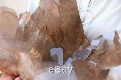 11100g(24.4lb) Natural Smoke Golden Rutilated Quartz Crystal Cluster Specimen