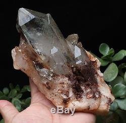 1140g Clear Natural Green Ghost Phantom QUARTZ Crystal Cluster Specimen
