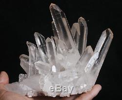 1150g AAA Clear Natural Beautiful White QUARTZ Crystal Cluster Specimen