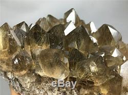 1185g NATURAL Clear Golden RUTILATED QUARTZ Crystal Cluster POINT Specimen