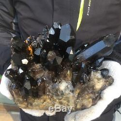 12.3lb 7.8 Natural Large Black Quartz Crystal Cluster Tibetan Specimen EG37