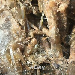 1227g Rare Natural Settlings Smoky Quartz Crystal Cluster Rough Healing Specimen