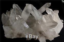 12350g NATURAL Tibetan CLEAR QUARTZ CRYSTAL CLUSTER point mineral Specimen