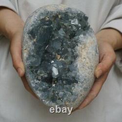 12LB 8 Natural Baby Blue Celestite Quartz Crystal Geode Cluster Points Brazil