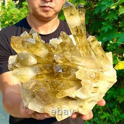 13.55LB Natural Citrine cluster mineral specimen quartz crystal healing F428