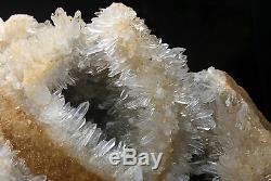 13.72lb New Find Natural White chrysanthemum QUARTZ Crystal Cluster Specimen
