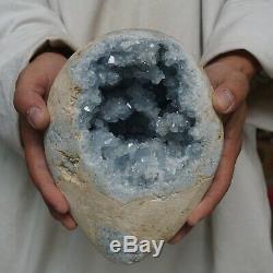13.82LB Natural Baby Blue Celestite Quartz Crystal Geode Cluster Points Brazil
