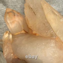 1460g Large Natural Clear White Quartz Crystal Cluster Rough Healing Specimen