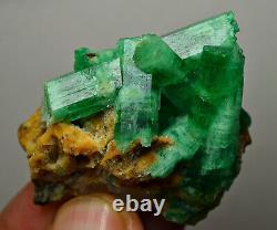 149 CT. Full Terminated Top Green Panjsher Emerald Huge Crystals Bunch, Quartz
