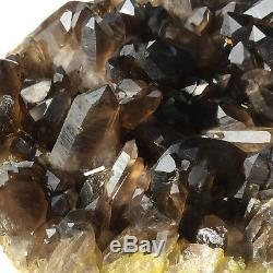 15.8lb Huge Natural Black Smoky Quartz Crystal Cluster Rough Healing Specimen