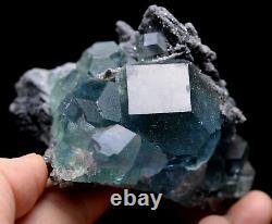 158g NATURAL Green Blue Purpe FLUORITE Quartz Crystal Cluster Mineral Specimen