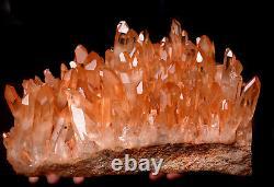 16.7lb Natural Rare Beautiful Red skin QUARTZ Crystal Cluster Specimen