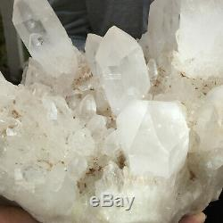 17.1lb Large Natural Clear White Quartz Crystal Cluster Rough Healing Specimen