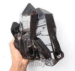 17.6LB Natural Rare Beautiful Black QUARTZ Crystal Cluster Mineral Specimen