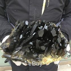 18.0lb 6.5 Natural Beautiful Black Quartz Crystal Cluster Tibetan Specimen EK28