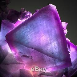 1930gMuseum Quality-Natural Rare Purple/Blue Octahedral Fluorite Crystal Cluster