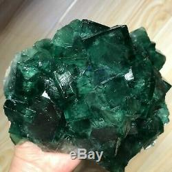1978g NATURAL Green FLUORITE Quartz Crystal Cluster Mineral Specimen g22