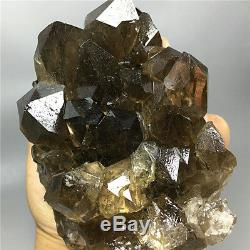 2.13lb New Find NATURAL Clear Golden RUTILATED QUARTZ Crystal Cluster Specimen