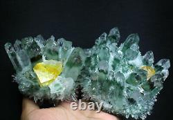 2.52lb New Find Green/Yellow Phantom Quartz Crystal Cluster Mineral Specimen
