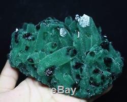 2.58lb RARE! New Find Natural Beatiful Green Quartz Crystal Cluster Specimen