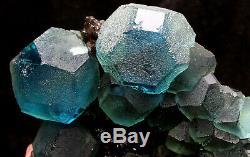 2.5lb NATURAL Blue Green FLUORITE Quartz Crystal Cluster Mineral Specimen