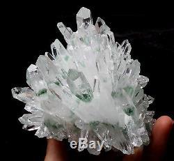 2.61lb New Find Green Phantom Quartz Crystal Cluster Mineral Specimen Healing