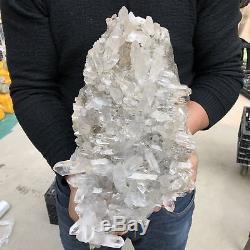 22.7LB Natural Clear Quartz Cluster Mineral Crystal specimen 16.5 TT506