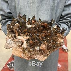 24.28LB Natural smokey Quartz Cluster Mineral Crystal Specimen Healing ETD1019-2