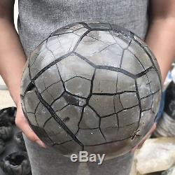 25.5LB Natural dragon septarian geode quartz cluster crystal ball healing EQ5082