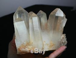 2719g A+ Rare Natural New find Red Quartz Crystal Cluster Specimen Reiki Wicca
