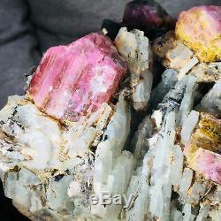2873g Large Natural Pink Tourmaline Crystal Cluster Gemstone Mineral Specimen