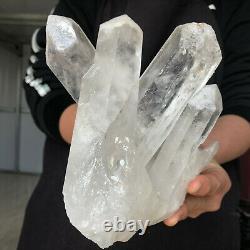 3.4LB A+++ Large Himalayan High Grade Quartz Crystal Clusters Specimen H242