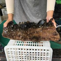 31.7LB Natural Smokey Citrine Quartz Cluster Mineral Crystal Healing ZX4280-6