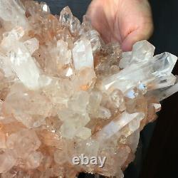 3175g Large Natural Clear Pink Quartz Crystal Cluster Rough Healing Specimen