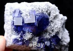 319.1g Blue Purple FLUORITE Quartz Crystal Cluster Mineral Specimen