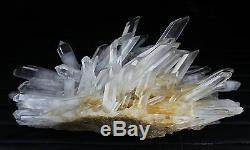 36.9lb New Find Clear Natural White QUARTZ Crystal Cluster Original Specimen
