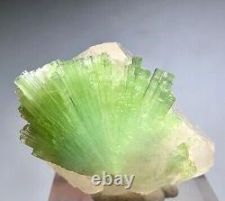 383 ct Amazing Tourmaline Crystals Bunch With Quartz From Afghanistan