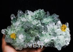 4.58lb Rare Beatiful Green Tibetan Ghost phantom Quartz Crystal Cluster Specimen
