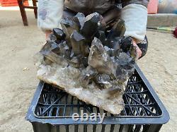 44.5LBS Huge Natural Smoky QUARTZ Crystal Cluster Specimen Wand Point Healing