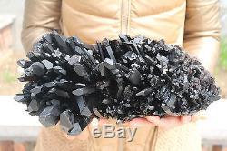4800g Natural Beautiful Black Quartz Crystal Cluster Tibetan Specimen #504