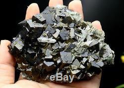 480g Natural black Andradite Garnet Crystal Cluster Quartz Inner Mongolia China