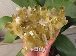 5.5lb NATURAL Citrine quartz crystal cluster Point Specimens